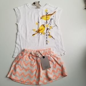Zara Girls Top And Skirt Outfit Size 3-4 Yrs NWT